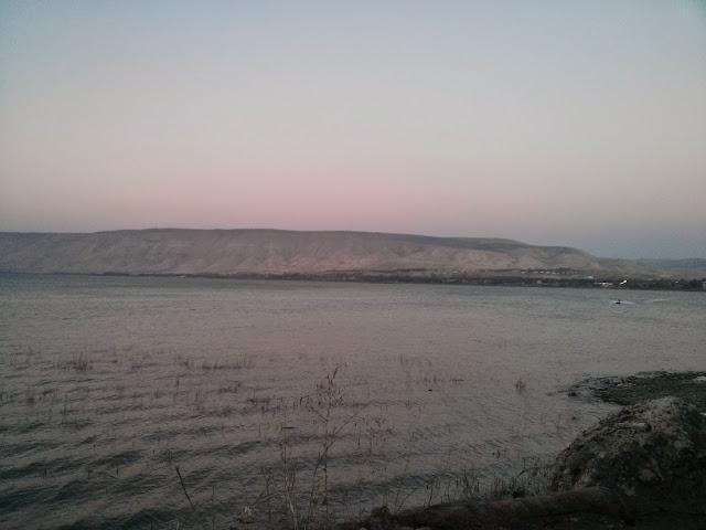 חוף כנרת