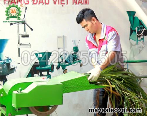 Cửa nạp liệu của máy băm cỏ cho bò giá rẻ 3A2,2Kw