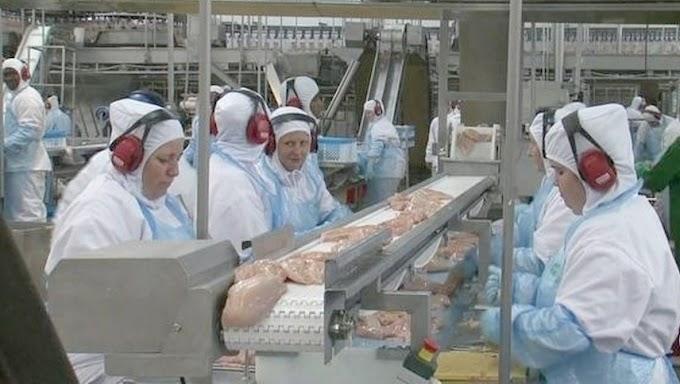 Frango com Corona: Filipinas suspendem temporariamente importações da carne de frango do Brasil por medo de coronavírus