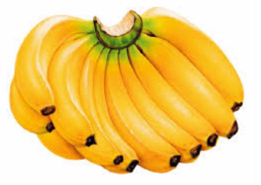 Buah Pisang (Musa paradisiaca)