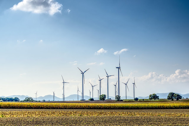 Cost-competitiveness puts wind energy in front | REVE News