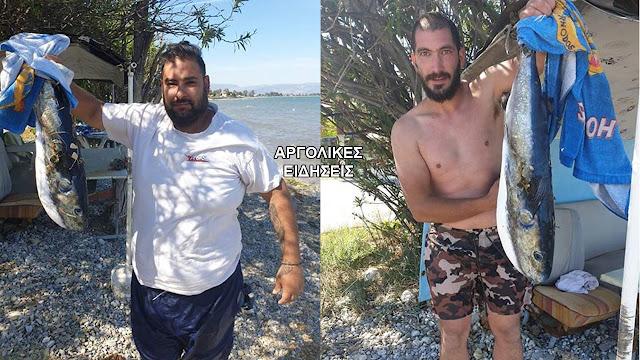 Επικίνδυνο λαγοκέφαλο έπιασαν ερασιτέχνες ψαράδες στην Αργολίδα