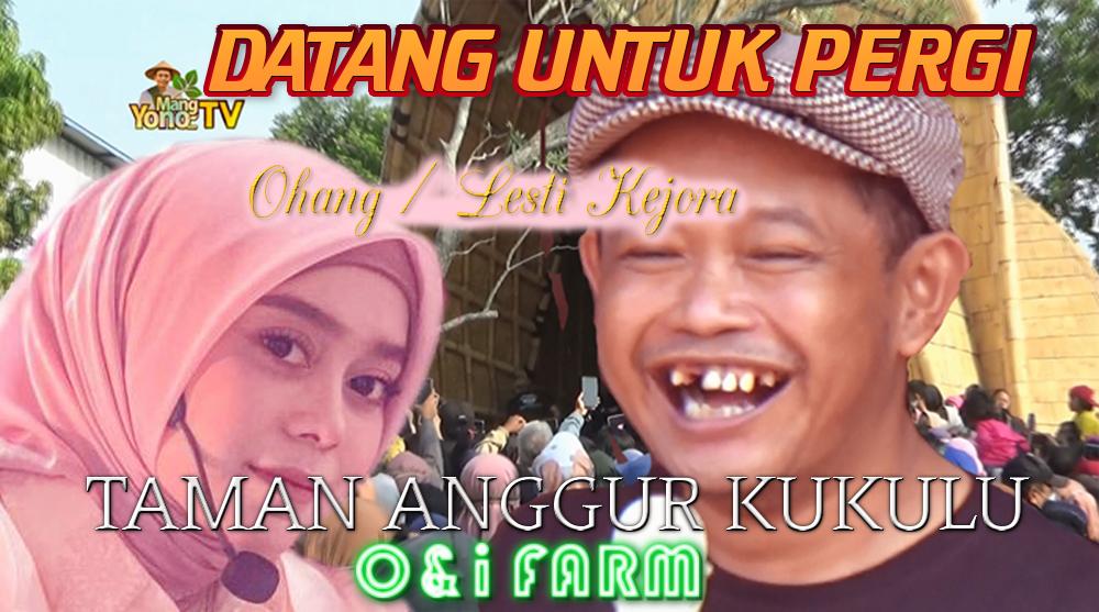 OHANG / LESTI Kejora nyanyi Lagu DATANG UNTUK PERGI di Taman Anggur Subang - O&i Farm Kukulu Subang