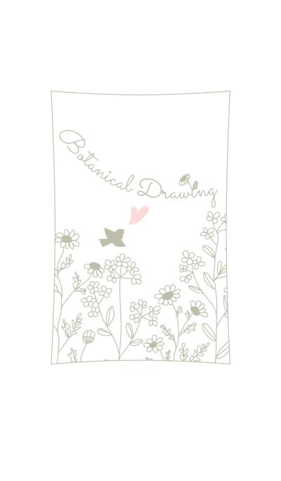 Botanical Drawing/White 14