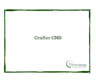 Crafter CMS Training in Hyderabad India