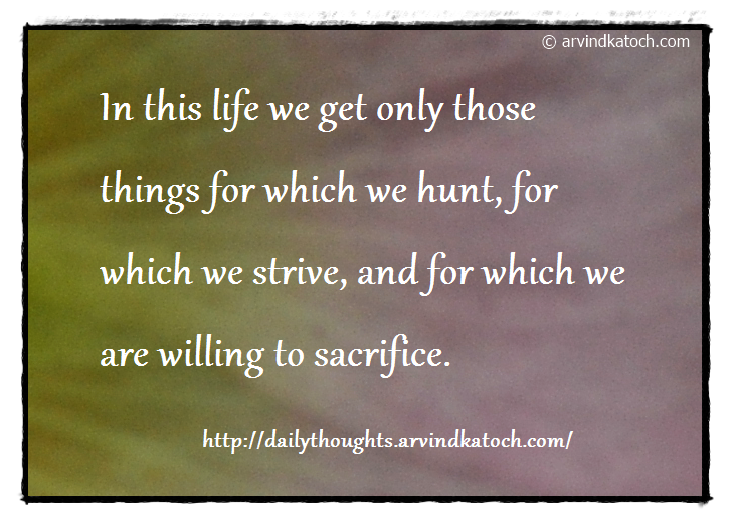Daily Quote, Hard efforts, life, willing, strive, sacrifice, hunt,