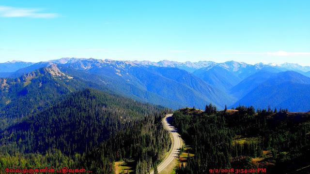 Hurricane Ridge Scenic Drive