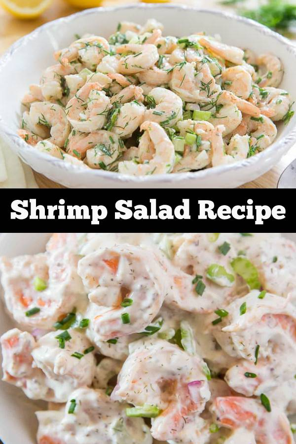 Shrimp Salad Recipe | Creamy Shrimp Salad #salad #shrimp #seafood #lowcarb #dinner #lunch