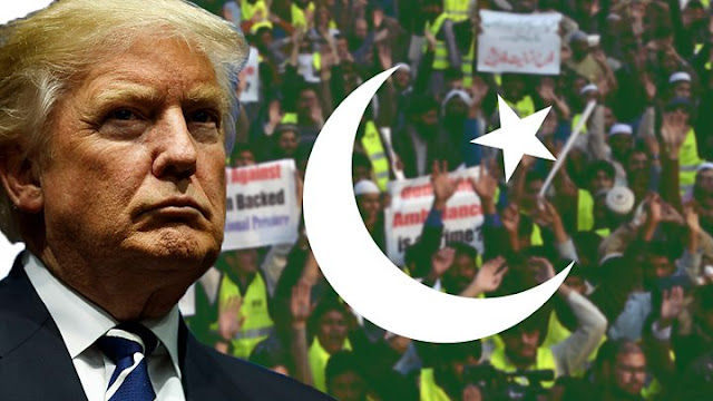 VIDEO Trump cancels $300M aid to Pakistan where US flags are burned - now they hate America for free