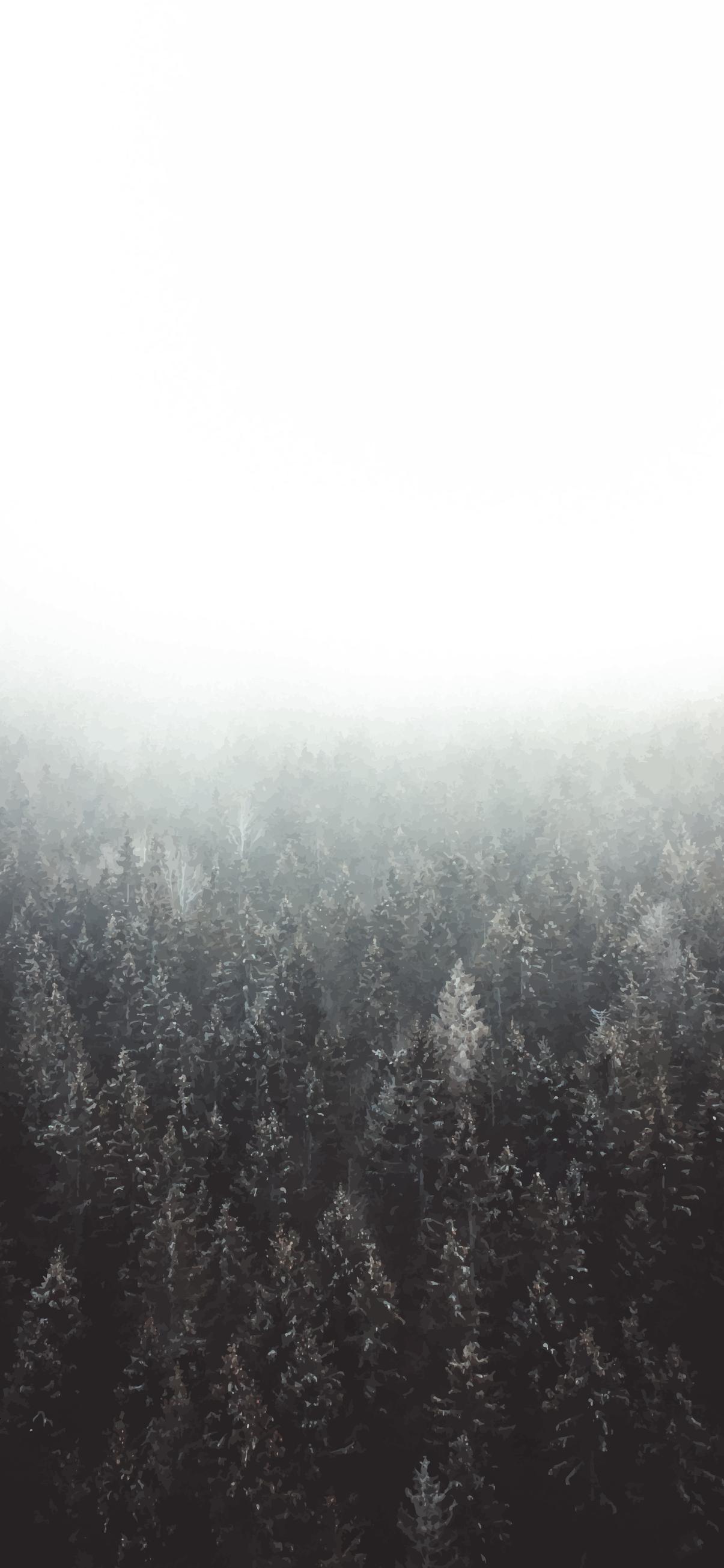 bw forest wallpaper 4k for phone ios theme background lockscreen homescreen screensaver