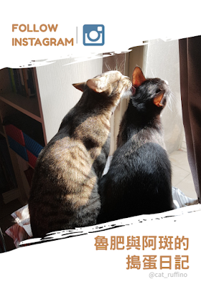 Instagram-冷凍食品推薦