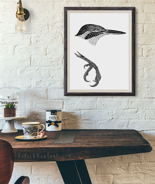 Etsy bird clipart royalty free images instant download