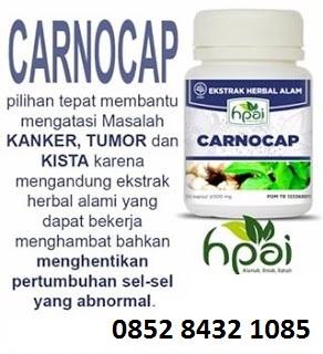 Obat tumor kanker herbal CARNOCAP HPAI asli alami tradisional