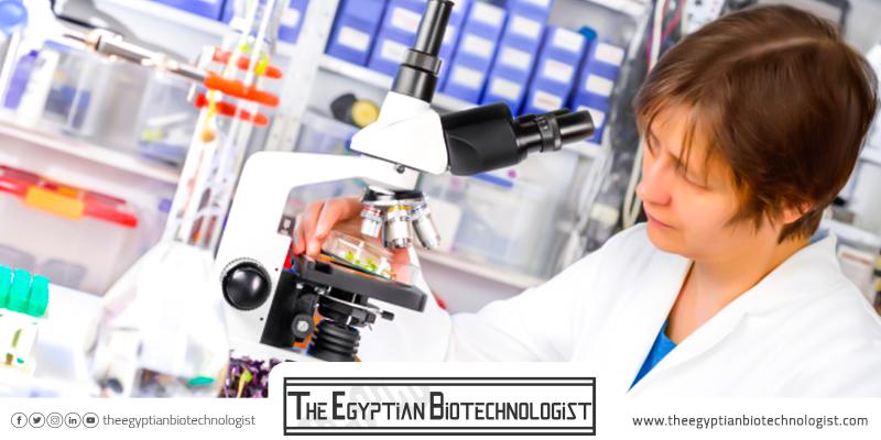 كلية التكنولوجيا الحيوية