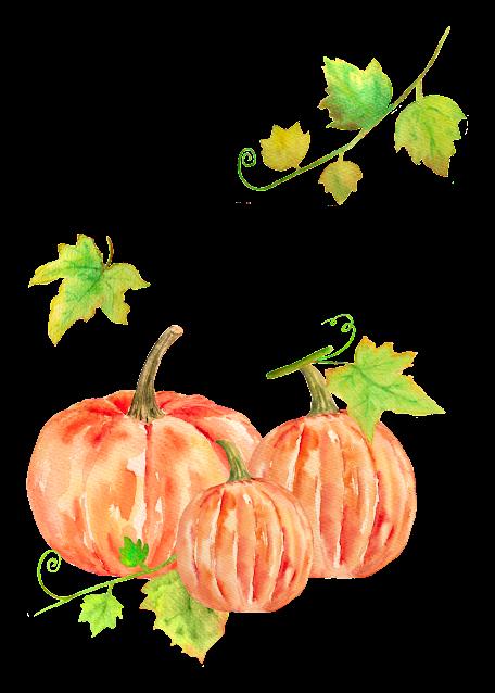 three orange pumpkins printable