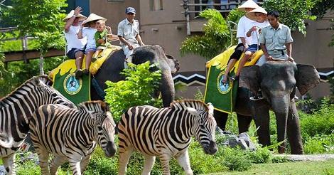 Wisata Bali Safari And Marine Park