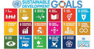 Sustainable Development Goal Index