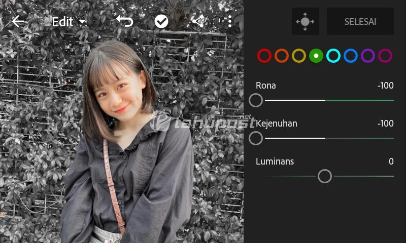 Cara Mengubah Warna Daun di Lightroom Android Jadi Abu-Abu