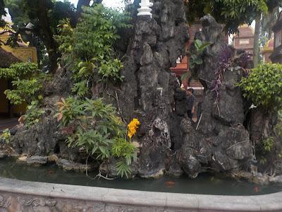 鎮国寺のホンノンボ