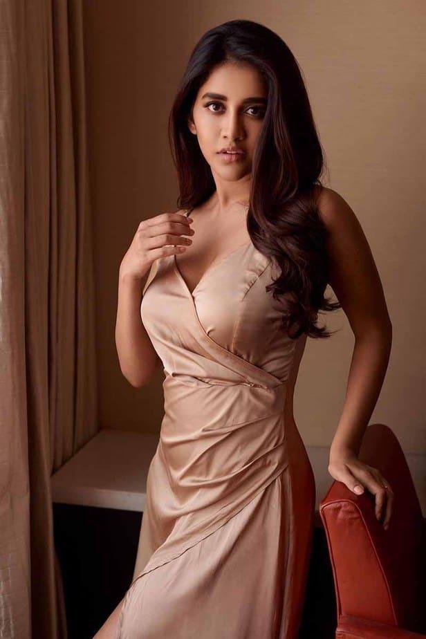 Actress Nabha Natesh latest Hot Photos & Pics