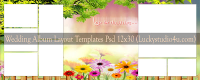 Wedding Album Layout Templates 12x30