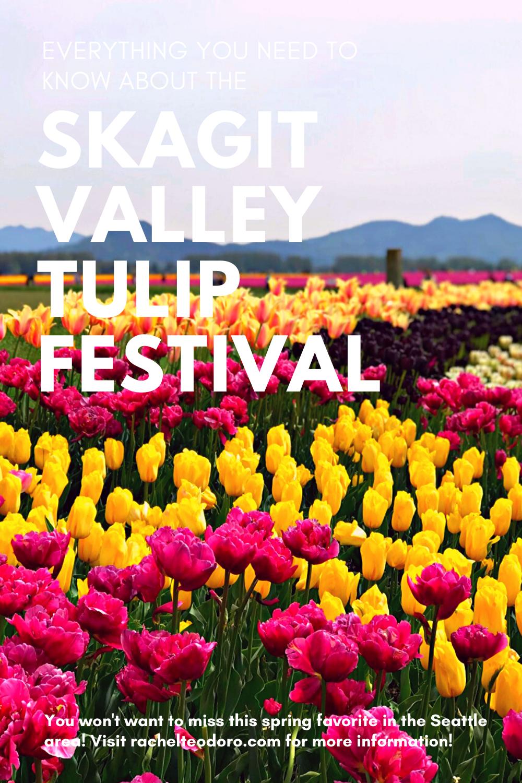 seattle spring tulip festival