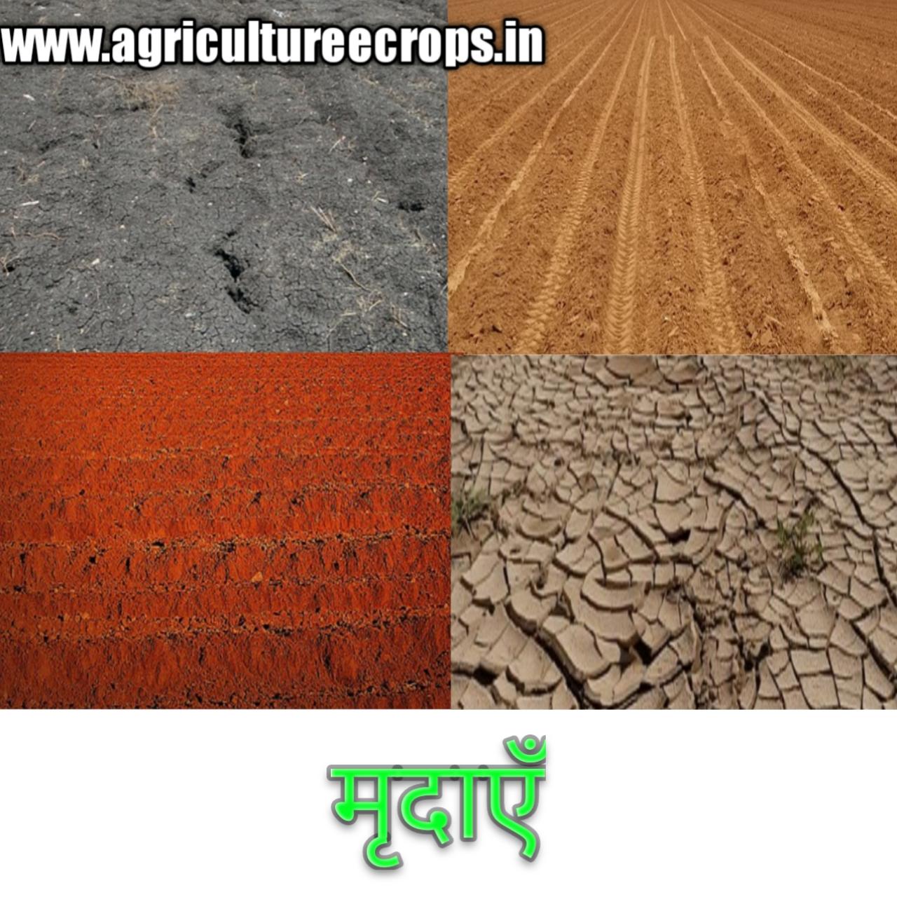 भारत और मध्यप्रदेश में पाई जाने वाली मृदाऐं Soils found in Madhya Pradesh, मध्य प्रदेश की मिट्टी, मिट्टी कितने प्रकार की होती है