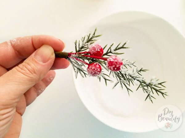 frost berries