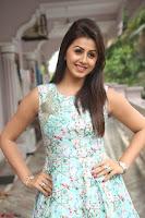 Nikki Galrani at Prema leela pelli gola trailer Launch ~  Exclusive 111.JPG