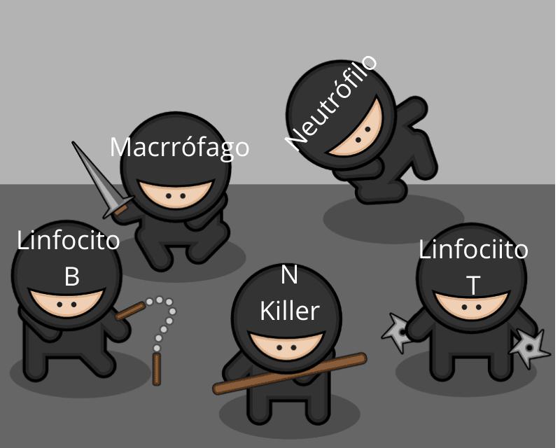 globulos blancos disfrazados de ninjas