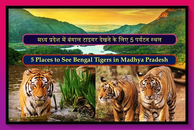 मध्य प्रदेश में बंगाल टाइगर देखने के लिए 5 पर्यटन स्थल   Top 5 Tourist Places to See Bengal Tigers In Madhya Pradesh