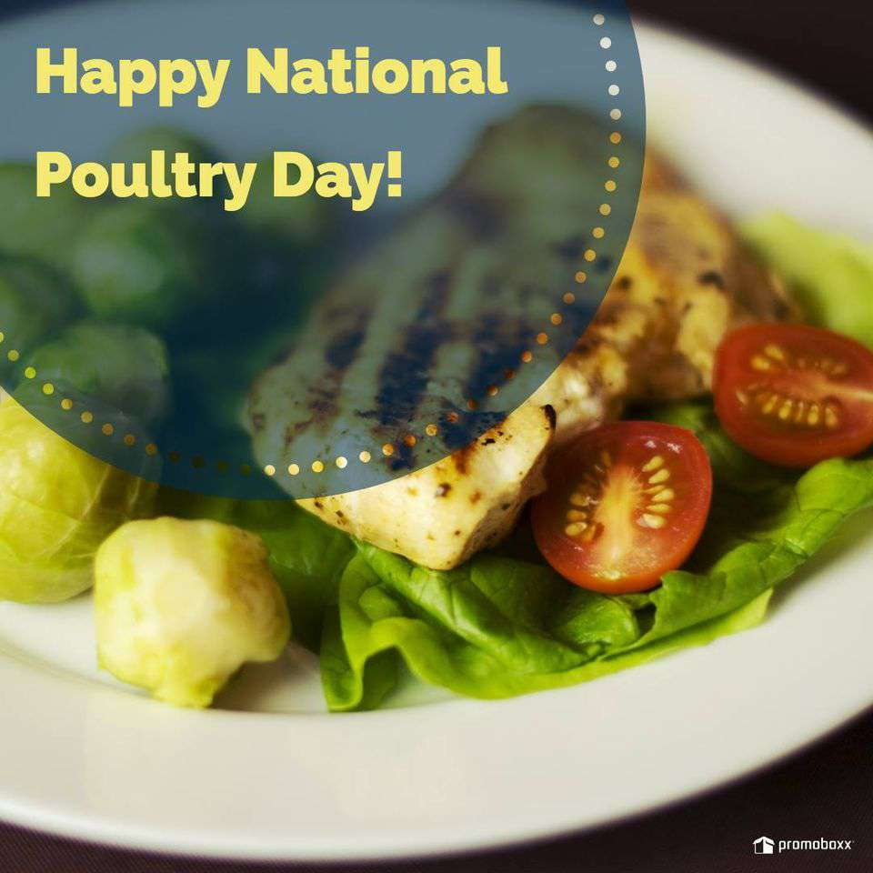 National Poultry Day Wishes Sweet Images
