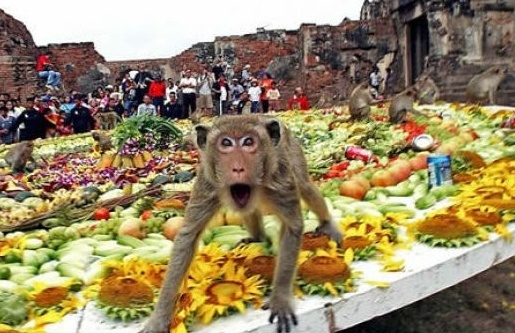 Top 5 Strange Festivals From Around The World Hindi