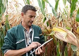 Offre_d'emploi_:_Responsable_d'exploitation_agricole