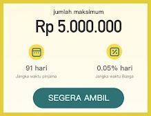 dana now pinjaman online