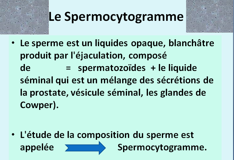normes oms spermogramme