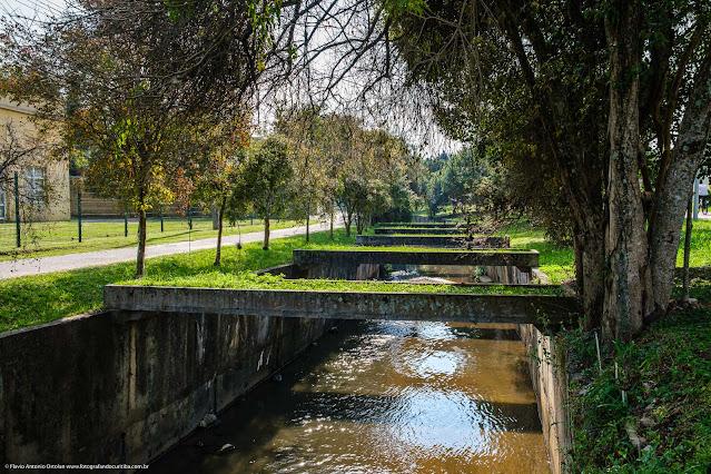 Ao longo do Rio Belém