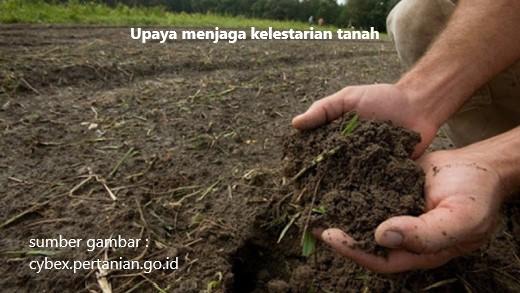 upaya menjaga kelestarian tanah