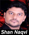 http://www.humaliwalayazadar.com/2016/06/shan-naqvi-nohay-2008-to-2017.html