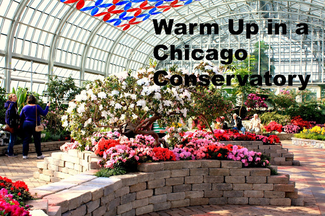 Chicago conservatories like the Garfield Park Conservatory provide a much needed warm weather escape in winter without leaving the area!