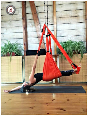 yoga aerien, aeroyoga, air yoga, yoga, pilates, fitness, sport, fly, flying, apensanteur, gravity, cours, stage, formation, professionnelle, anti, age, a distance, online, enseignants, professeurs,