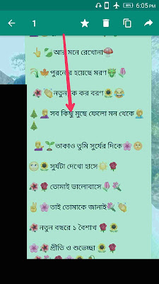 who-to-whatsApp-chat-save-and-stareed -messages