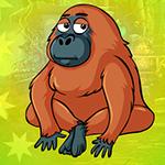 Play Games4King Hoary Chimpanz…