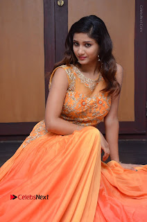 Telugu Actress Aarti Stills in Long Dress at Plus One ( 1) Audio Launch  0037.jpg