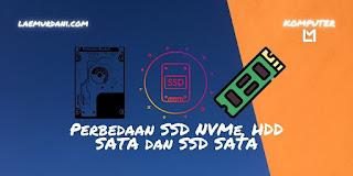 Perbedaan Besar SSD NVMe, HDD SATA dan SSD SATA