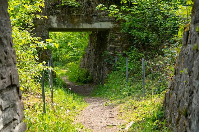 Pulvermühlenweg – Windeck | Erlebniswege Sieg | Wandern Naturregion-Sieg 14