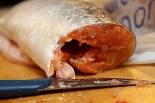 makanan yg mengandung kolagen