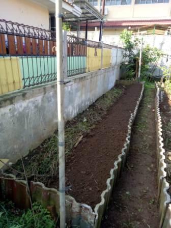 kebun sayur yodha anindita gambar 1