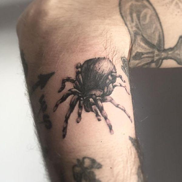 Tatuaje-Tarantula-Brazo