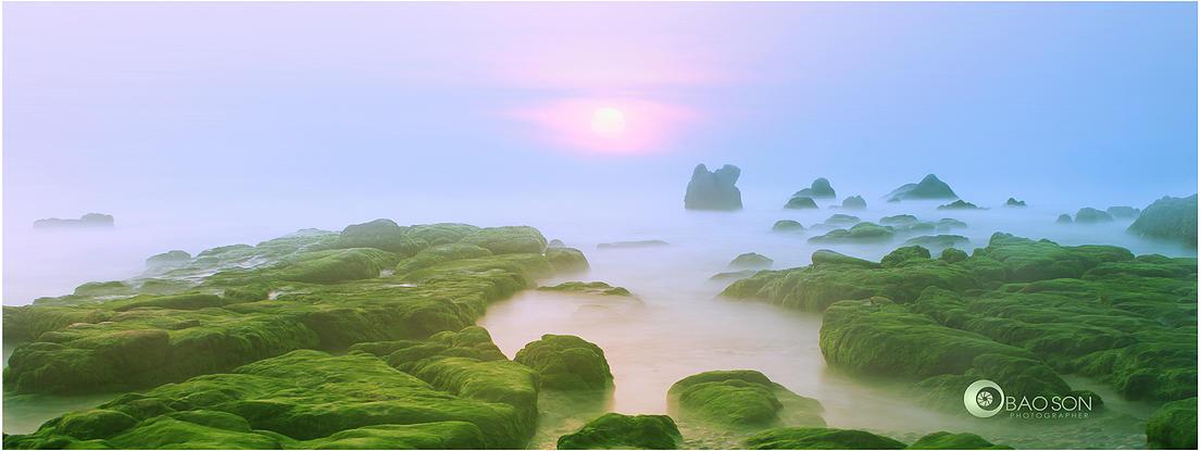 Tour nhiếp ảnh mùa rêu Phan Rang - Cổ Thạch